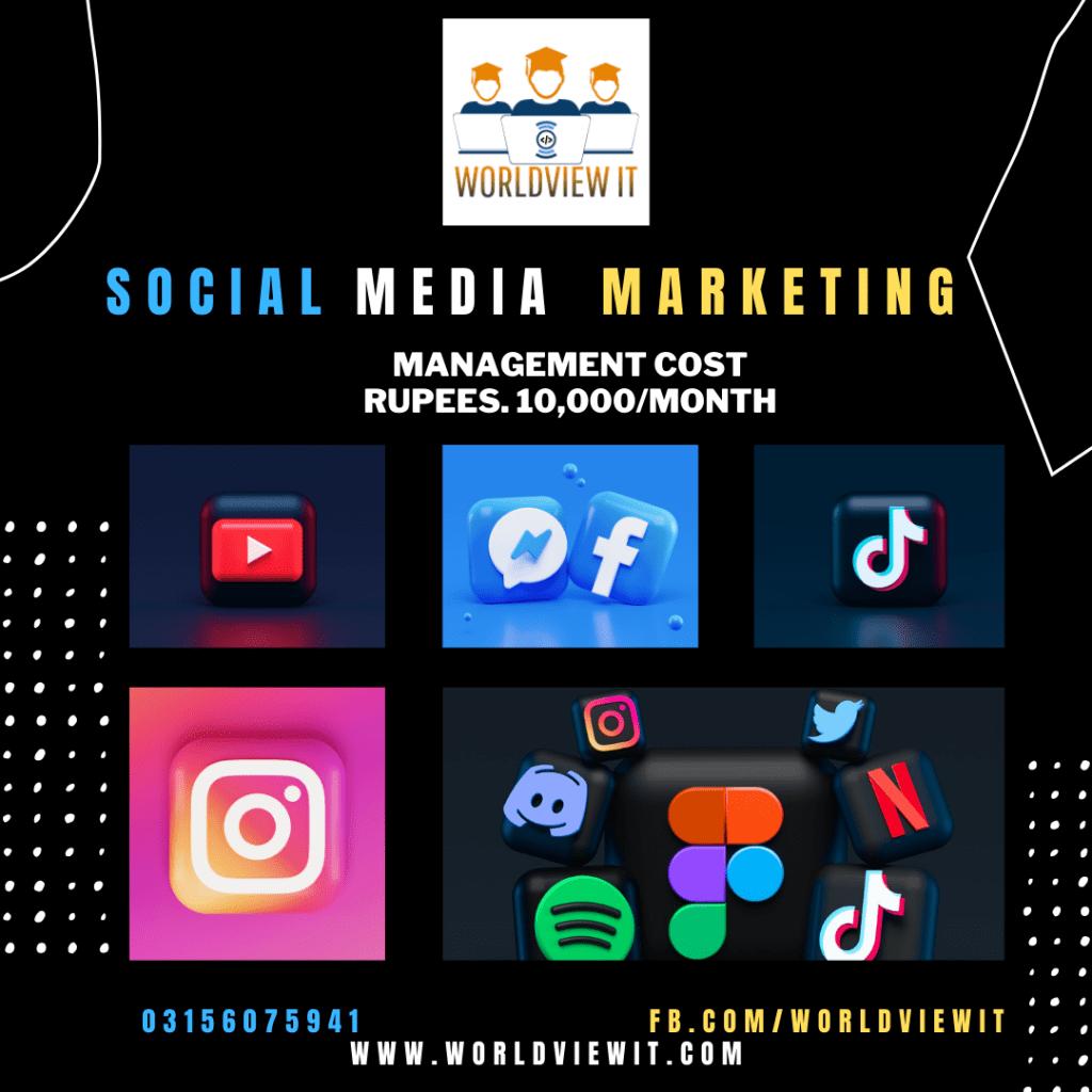 social media marketing worldviewit
